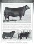 95 Registered Angus Lots…175 Head plus Embryos - A Cross Ranch - Page 6