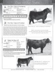 95 Registered Angus Lots…175 Head plus Embryos - A Cross Ranch - Page 7
