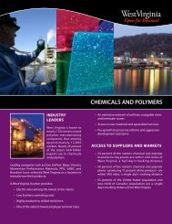 chemicals and polymers - West Virginia Department of Commerce