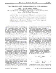 Phase Diagram of a Strongly Interacting Polarized Fermi Gas in One ...