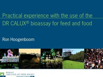 Practical experience with the use of the DR CALUX® bioassay for ...
