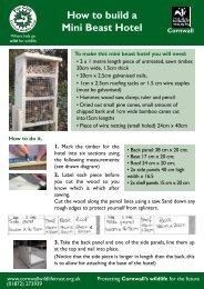 How to build a Mini Beast Hotel - Cornwall Wildlife Trust