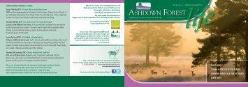 Spring/Summer 2013 - Ashdown Forest