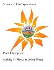 Science of Life Explorations Plant LIfe Cycles: Activity #1 Plants as ...