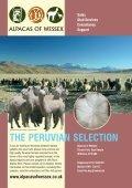 Winter - Classical Mileend Alpacas - Page 2