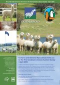Winter - Classical Mileend Alpacas - Page 5
