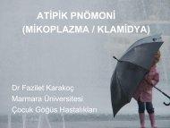 ATİPİK PNÖMONİ (MİKOPLAZMA / KLAMİDYA) - Fazilet Karakoç