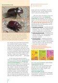 i Aussaat- und Pflanzzeiten - Seite 4