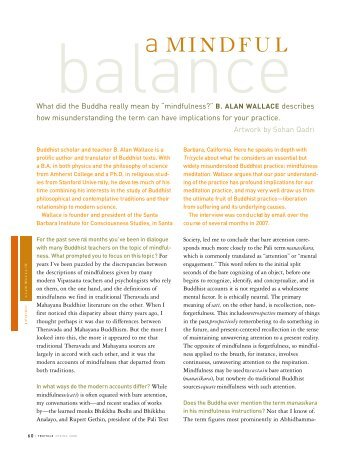 A Mindful Balance - B. Alan Wallace