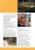 The lantana profile - Weeds Australia - Page 3