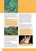 The lantana profile - Weeds Australia - Page 4