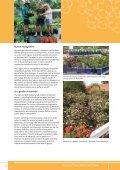 The lantana profile - Weeds Australia - Page 6