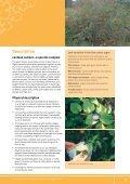 The lantana profile - Weeds Australia - Page 7