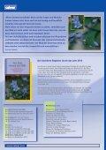 Kirche und Gemeinde - Page 3
