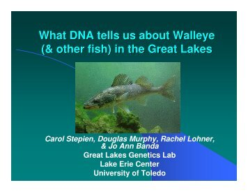 What DNA tells us about Walleye (& other fish) in the Great Lakes