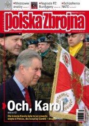 Polska Zbrojna (28 MARCA 2010 NR 13) - TELDAT