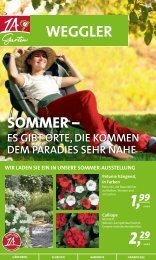 3 99 - 1A Garten Weggler