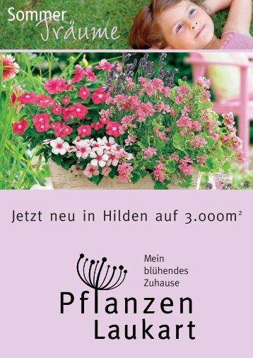 3,99 - Pflanzen Laukart