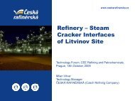 Steam Cracker Interfaces of Litvinov Site - Česká rafinérská, as