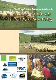 Fasting of sheep prior to shearing - Business.govt.nz