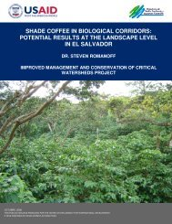 shade coffee in biological corridors: potential results at the ...