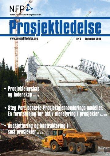 Last ned pdf her... (4,3 Mb) - Norsk senter for prosjektledelse - NTNU