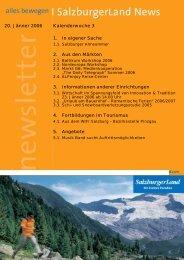 Nummer 3/2006 - SalzburgerLand Netoffice