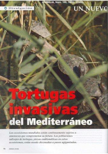 Tortugas invasivas del mediterràneo - aMasquefa