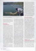 Tortugas invasivas del mediterràneo - aMasquefa - Page 3