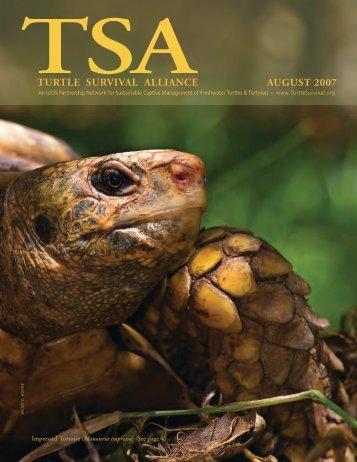 TSA newsletter - Turtle Conservancy