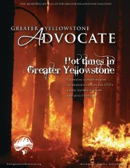 Download - Greater Yellowstone Coalition