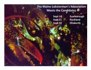 The Maine Lobstermen's Association Meets the Candidates