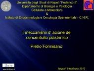Diapositiva 1 - Università degli Studi di Napoli Federico II