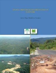 Spatial drivers of deforestation in Suriname - Centro de ...