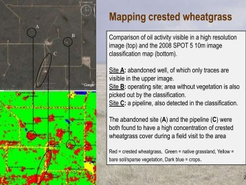 Detecting Grassland Change_Anne Smith Part2