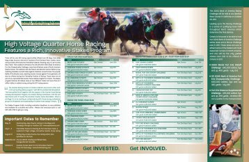 High Voltage Quarter Horse Racing - Ontario Racing Commission