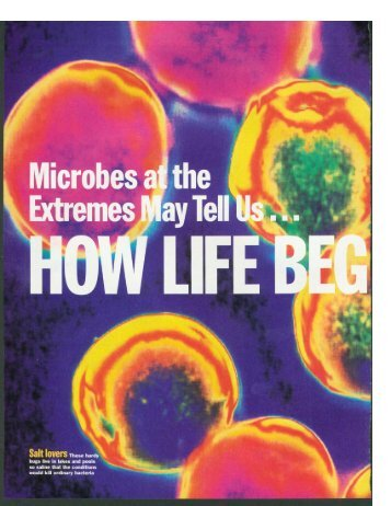 Microbes Extremes