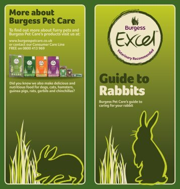 Guide to Rabbits - Burgess Pet Care