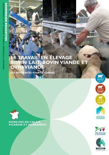 Le travail en élevage bovin-lait, bovin-viande - Chambre régionale d ...