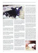 i i 8 i i ii - Kafkas Üniversitesi - Page 4