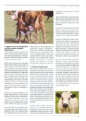 i i 8 i i ii - Kafkas Üniversitesi - Page 5