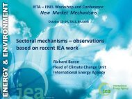 Richard Baron - International Emissions Trading Association