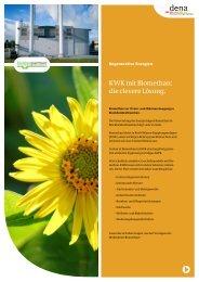 KWK mit Biomethan: die clevere Lösung (dena 2011 - Biogaspartner