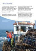 NE Sea Fisheries - Steps to Sustainability - FCRN - Page 6