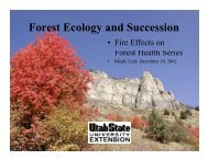 Forest Ecology and Succession - Forestry