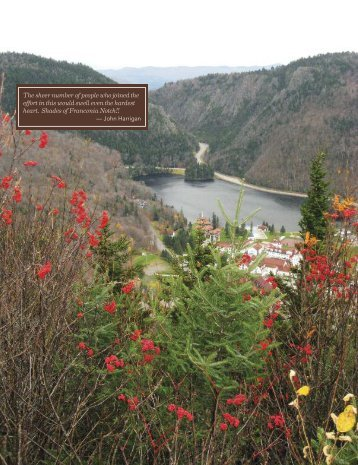 Balsams Landscape Conserved! - Society for the Protection of New ...