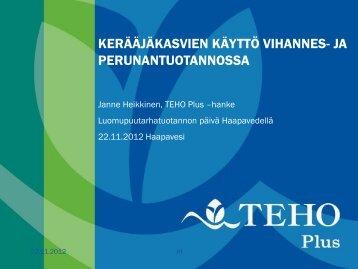 Kerääjäkasvit. - ProAgria Oulu