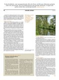 fraternitàemissione - Fraternità San Carlo - Page 4