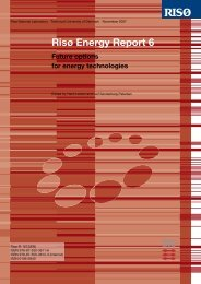 RISØ Energy Report 6 - Copenhagen Cleantech Cluster