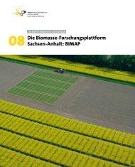 Die Biomasse-Forschungsplattform Sachsen-Anhalt